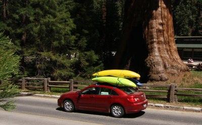 California Dreaming trailer
